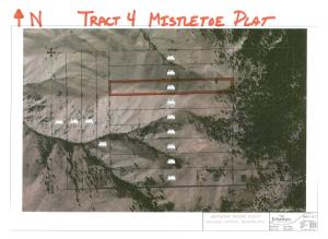 Tract 4 Aerial Map