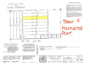 Tract 4 Plat Map