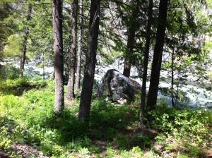 L1392 06 river side grove