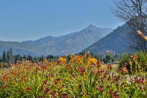 10245 Ski Hill Dr Leavenworth-large-017-