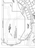 Saska Hills Snip of Future Tract I 98 Lo