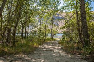 Erickson Cascade Path