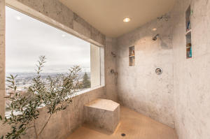 Main Primary Bathoom Shower