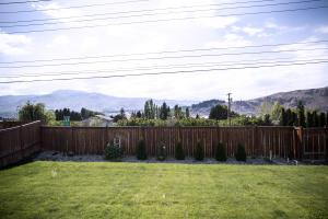 View from Back Yard