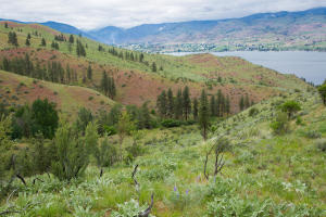 Bear Mountain -View