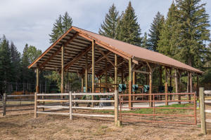 horse running shed
