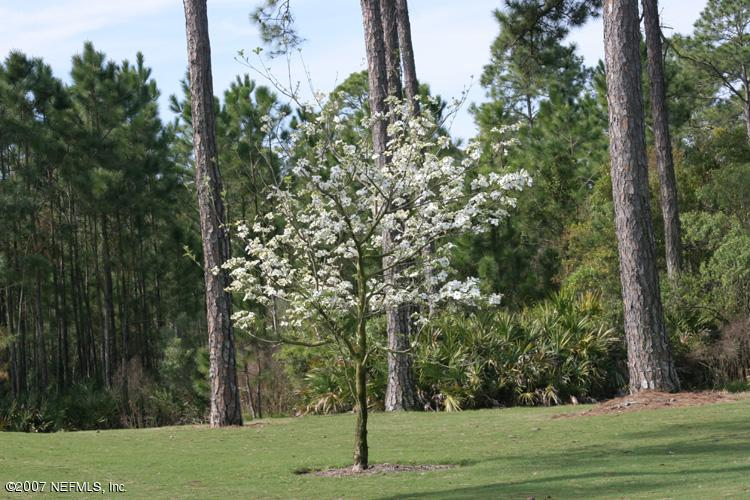JACKSONVILLE, FLORIDA 32224, ,Vacant land,For sale,496114