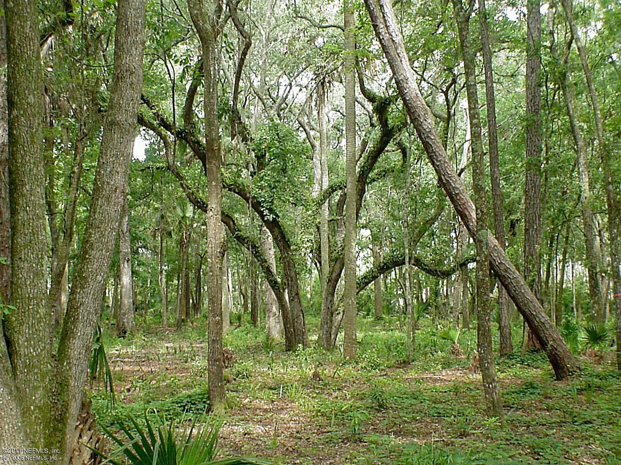 9707 OAK HAMMOCK, JACKSONVILLE, FLORIDA 32256, ,Vacant land,For sale,OAK HAMMOCK,587992