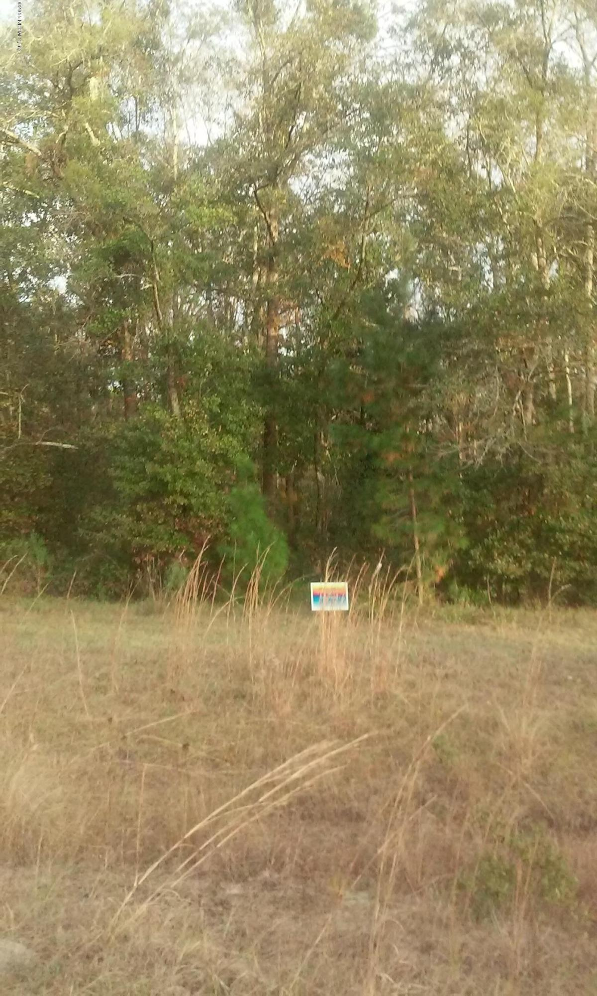 01234 COMMANDER ROW, LAKE CITY, FLORIDA 32025, ,Vacant land,For sale,COMMANDER ROW,748327