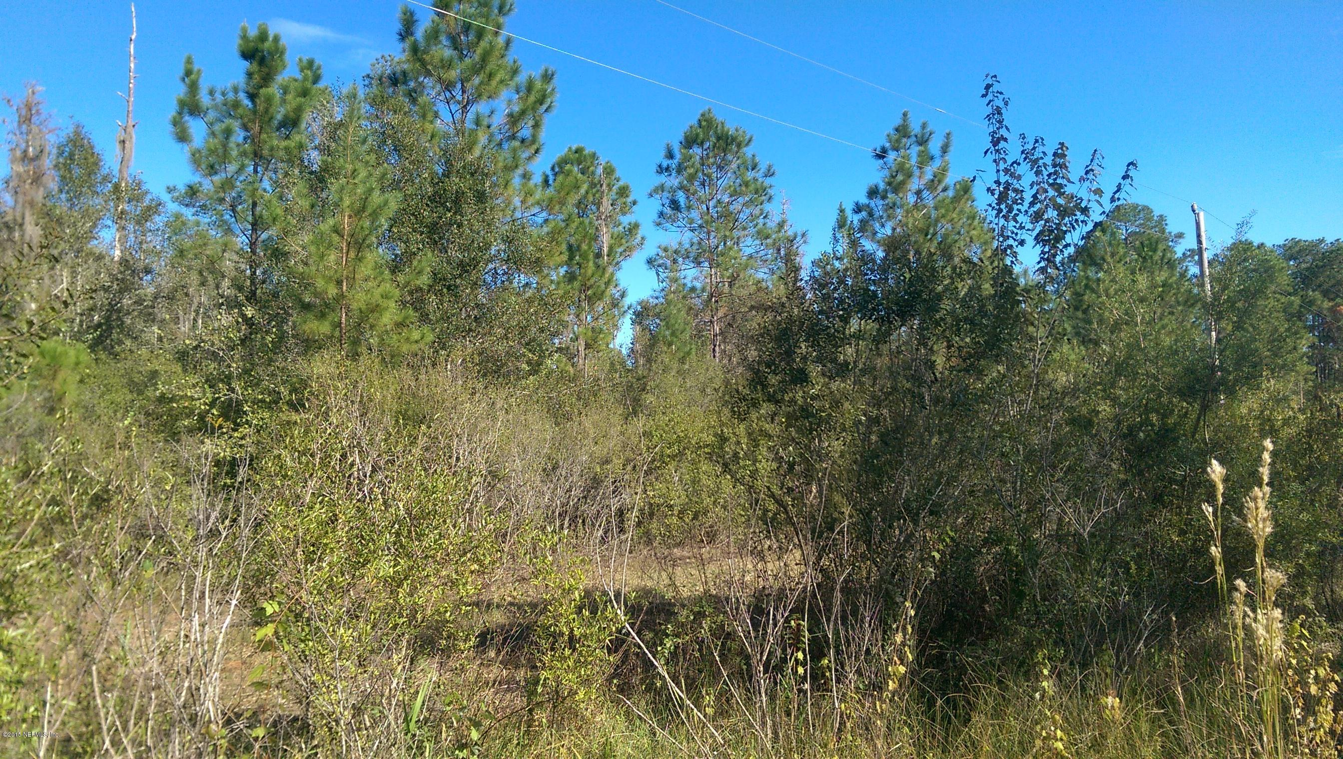 000 137TH, STARKE, FLORIDA 32091, ,Vacant land,For sale,137TH,801475