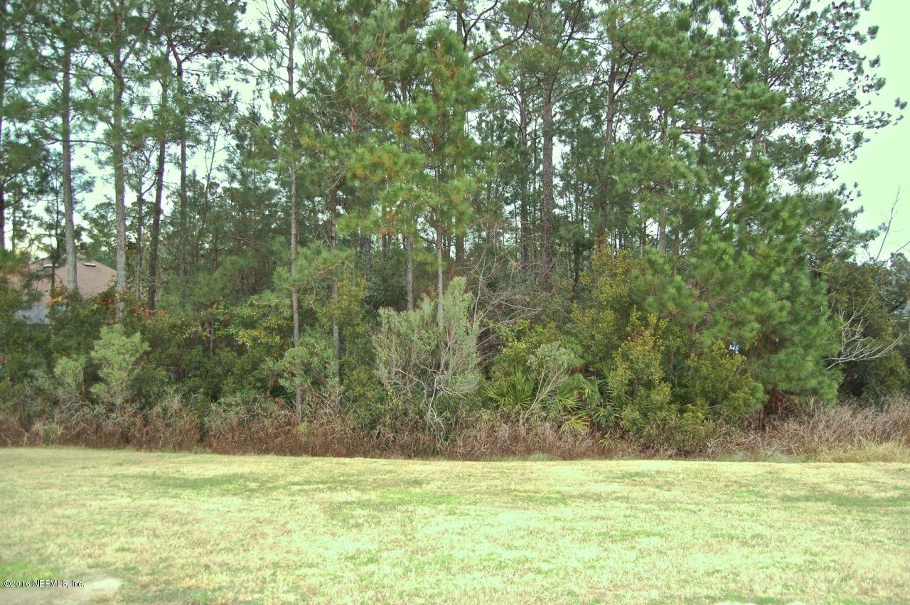 3423 OLYMPIC, GREEN COVE SPRINGS, FLORIDA 32043, ,Vacant land,For sale,OLYMPIC,811195