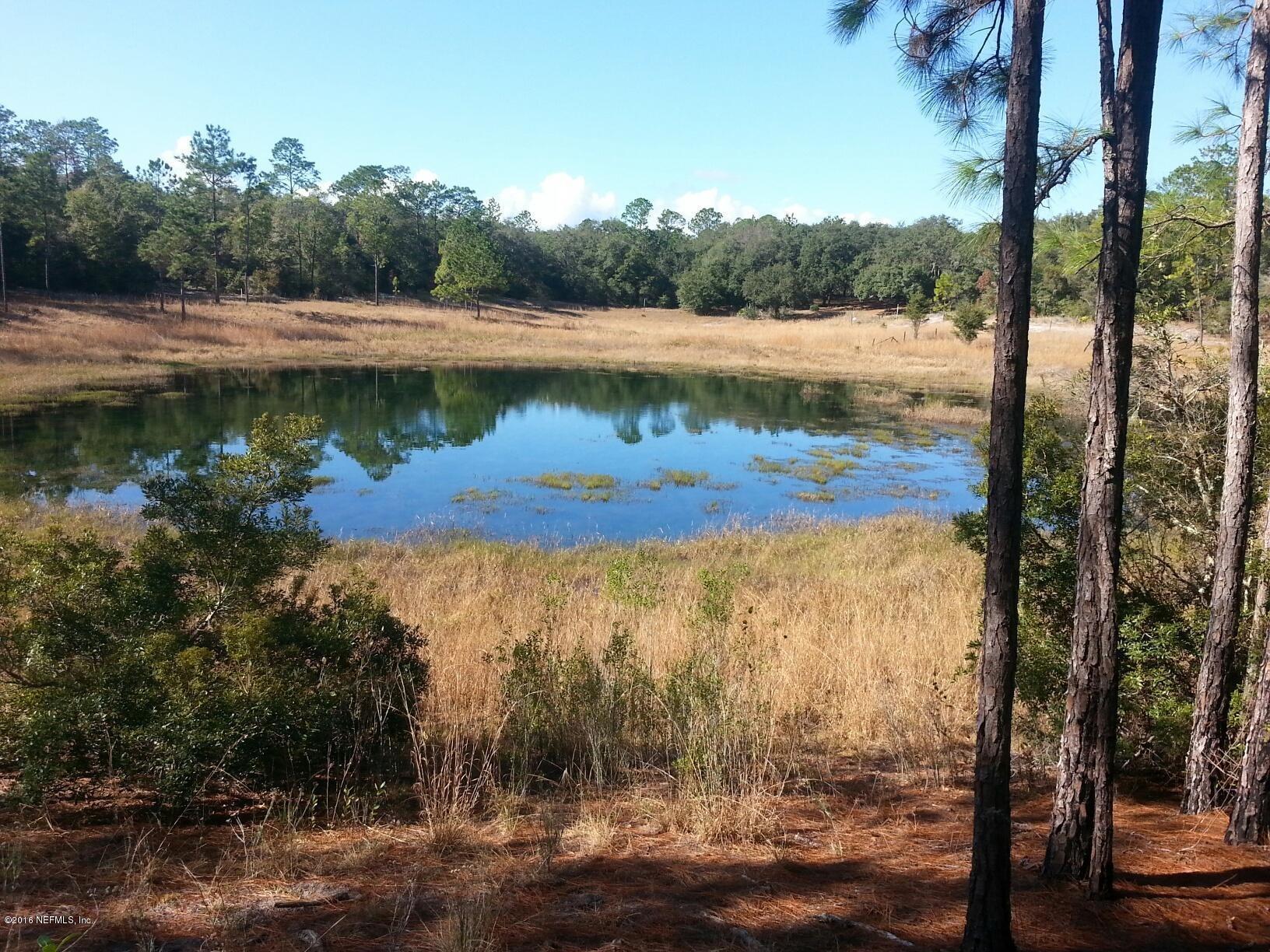 4534 ALAN LAKE, KEYSTONE HEIGHTS, FLORIDA 32656, ,Vacant land,For sale,ALAN LAKE,613455
