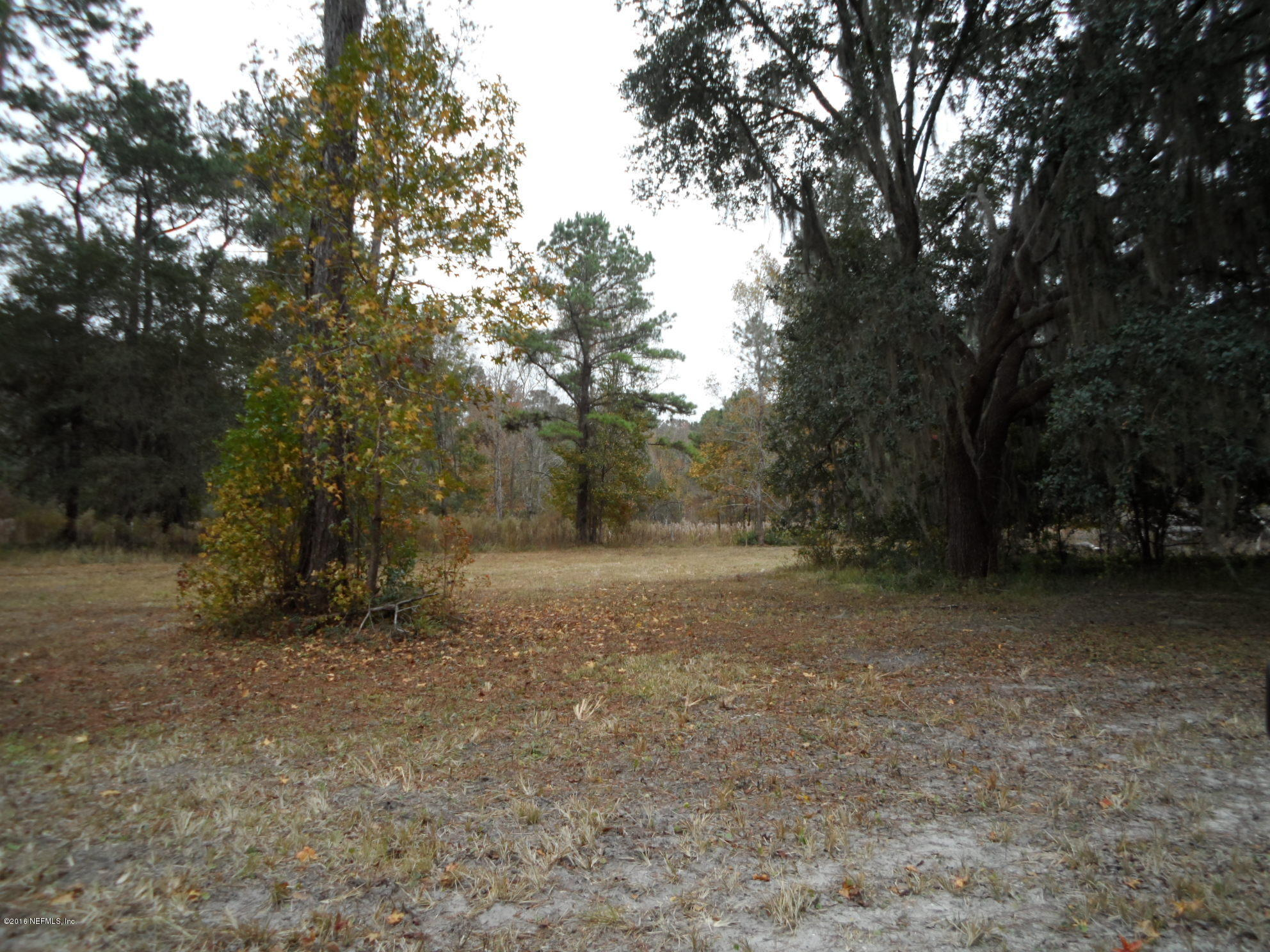 2312 PAGES DAIRY, YULEE, FLORIDA 32097, ,Vacant land,For sale,PAGES DAIRY,803815