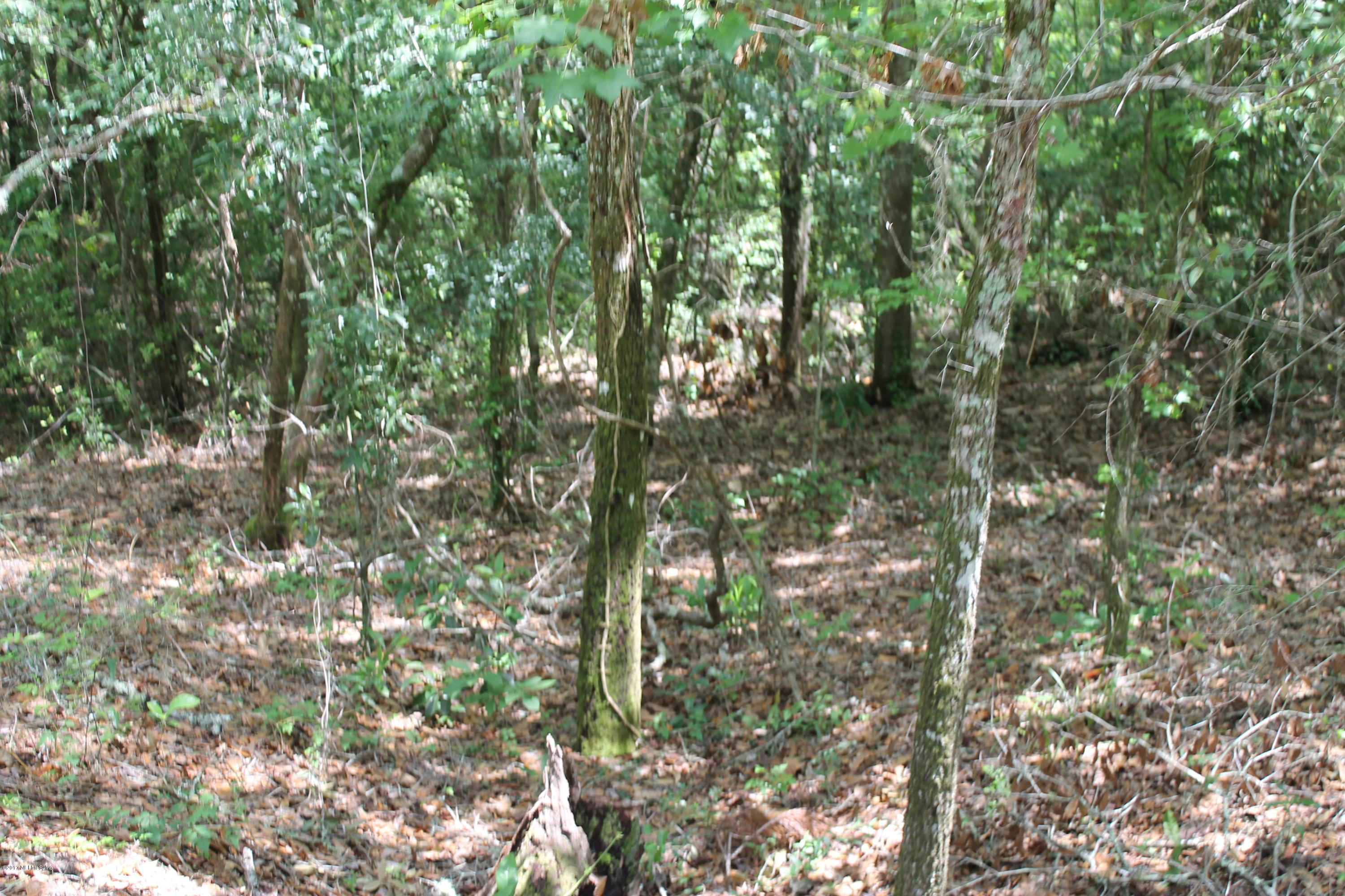 3906 COUNTY ROAD 218, MIDDLEBURG, FLORIDA 32068, ,Vacant land,For sale,COUNTY ROAD 218,865945