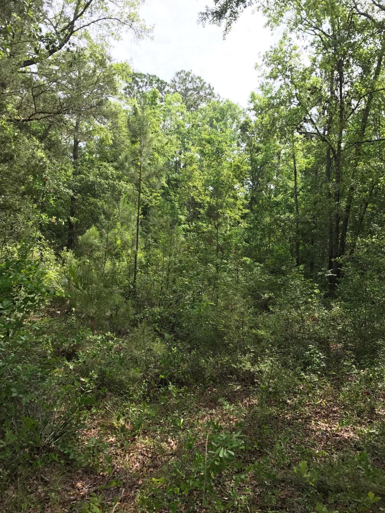 1820 AVA, GREEN COVE SPRINGS, FLORIDA 32043, ,Vacant land,For sale,AVA,885483