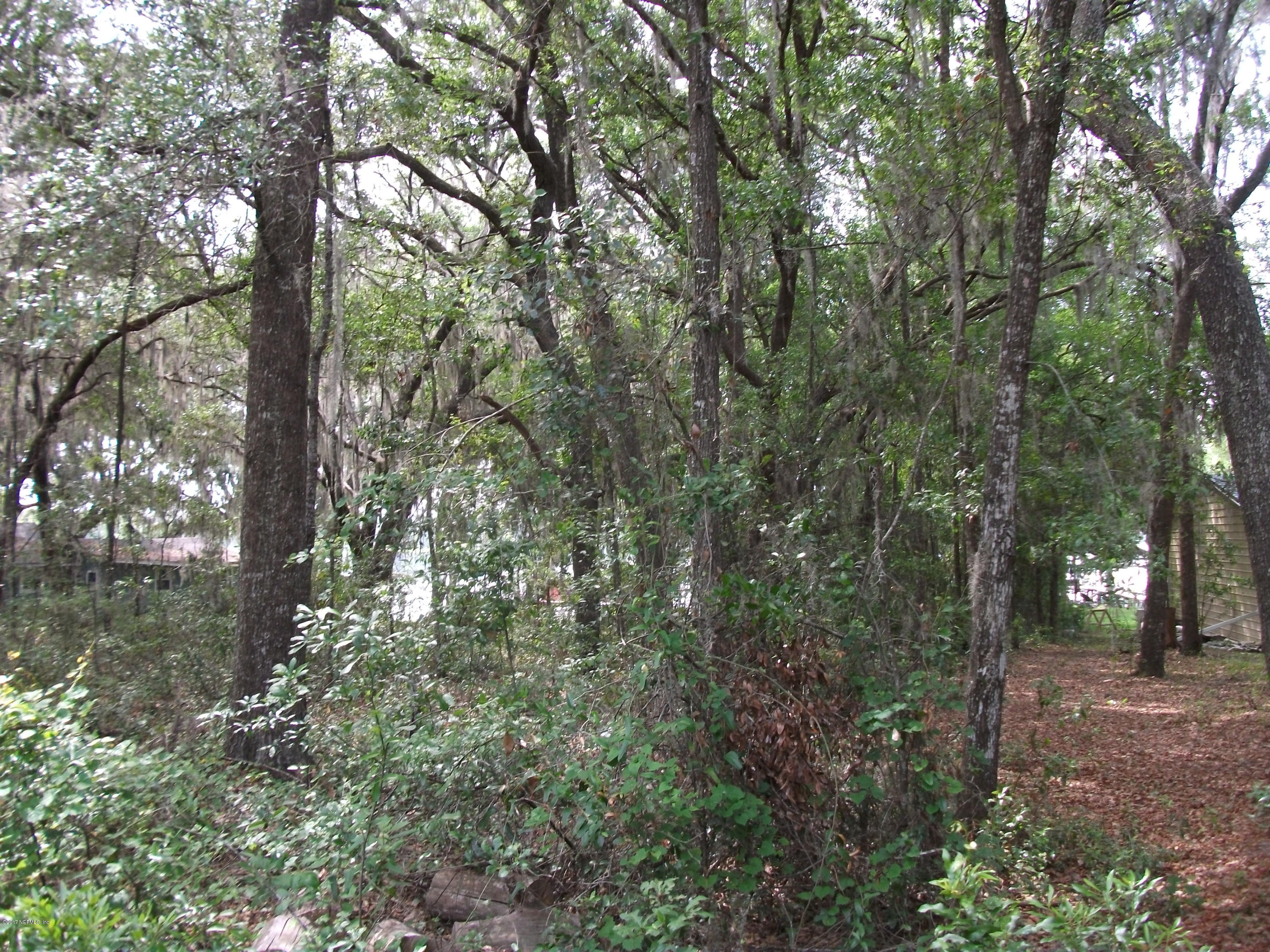 531 HILLSBOROUGH, FLORAHOME, FLORIDA 32140, ,Vacant land,For sale,HILLSBOROUGH,887652