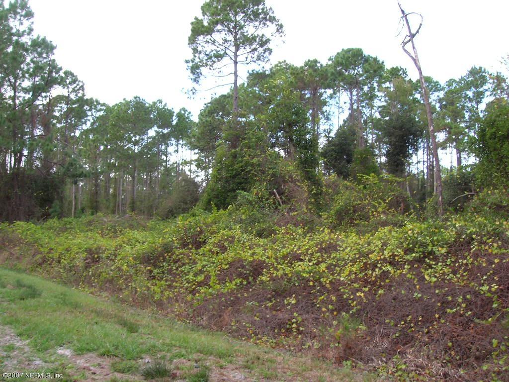 204 HAZEL, GEORGETOWN, FLORIDA 32139, ,Vacant land,For sale,HAZEL,889143