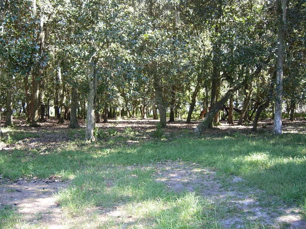 00 BAYARD, GREEN COVE SPRINGS, FLORIDA 32043, ,Vacant land,For sale,BAYARD,919384