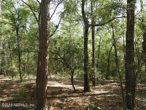 377 MELROSE LANDING, HAWTHORNE, FLORIDA 32666, ,Vacant land,For sale,MELROSE LANDING,926766