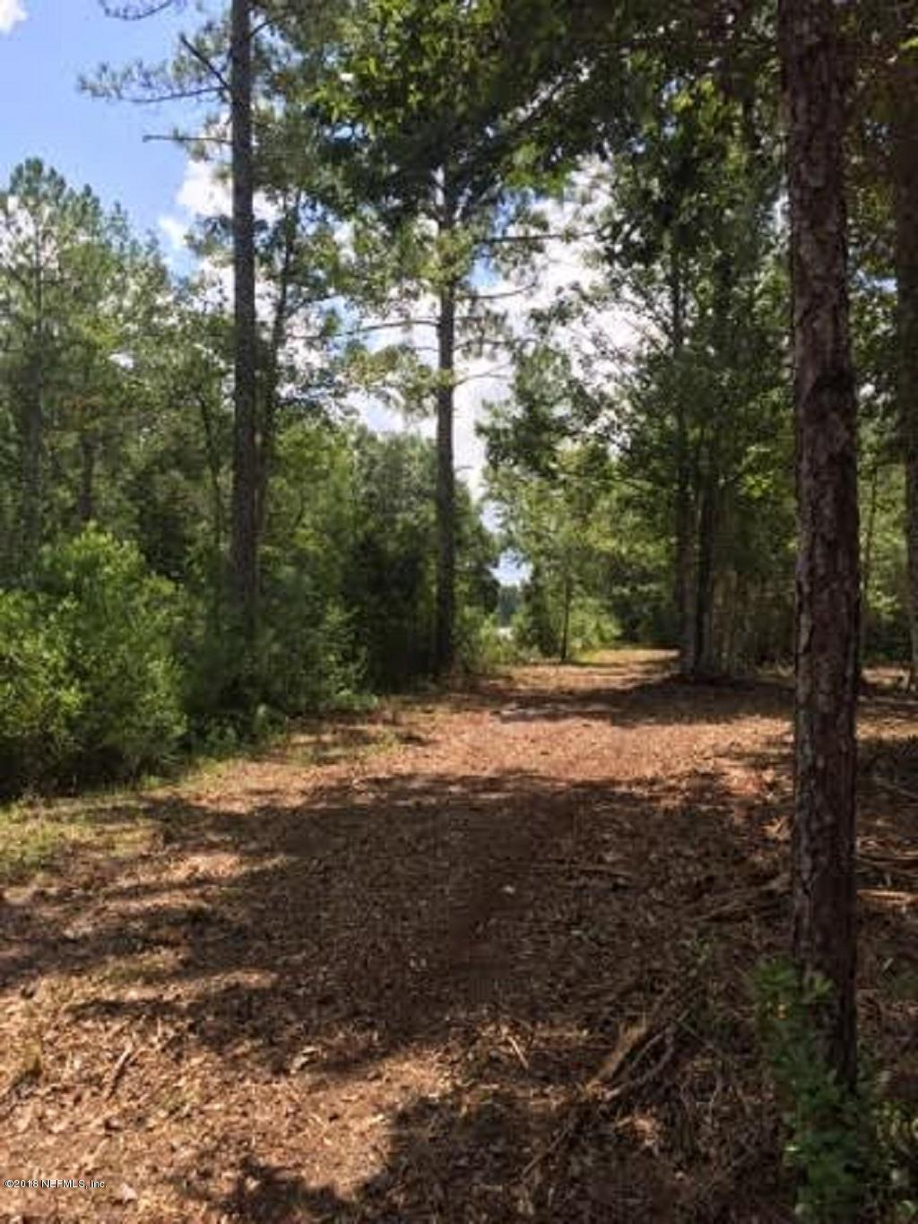 0000 51ST, MELROSE, FLORIDA 32666, ,Vacant land,For sale,51ST,934619