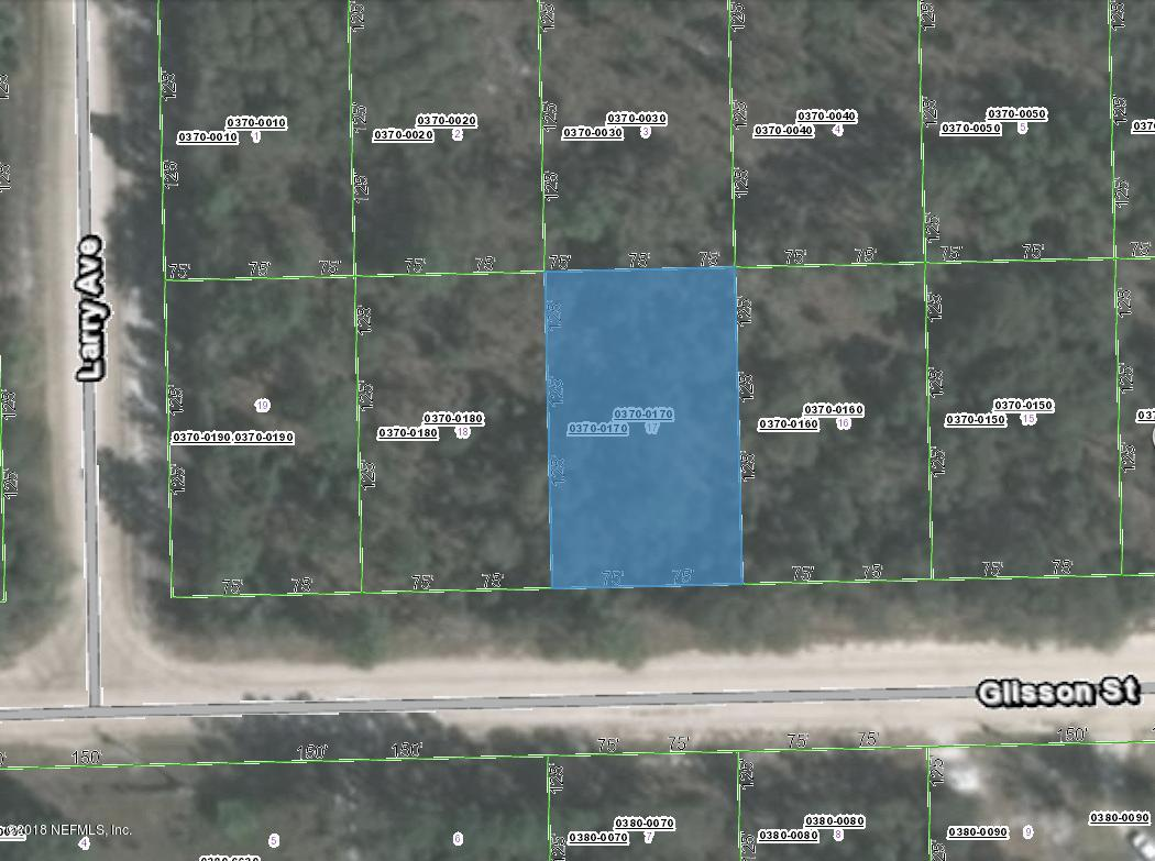 0370-0170 GLISSON, INTERLACHEN, FLORIDA 32148, ,Vacant land,For sale,GLISSON,957825