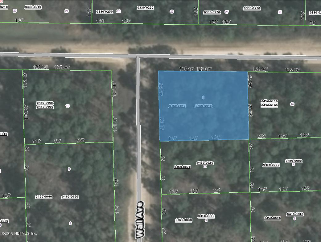 0450-0010 WALL, INTERLACHEN, FLORIDA 32148, ,Vacant land,For sale,WALL,957826