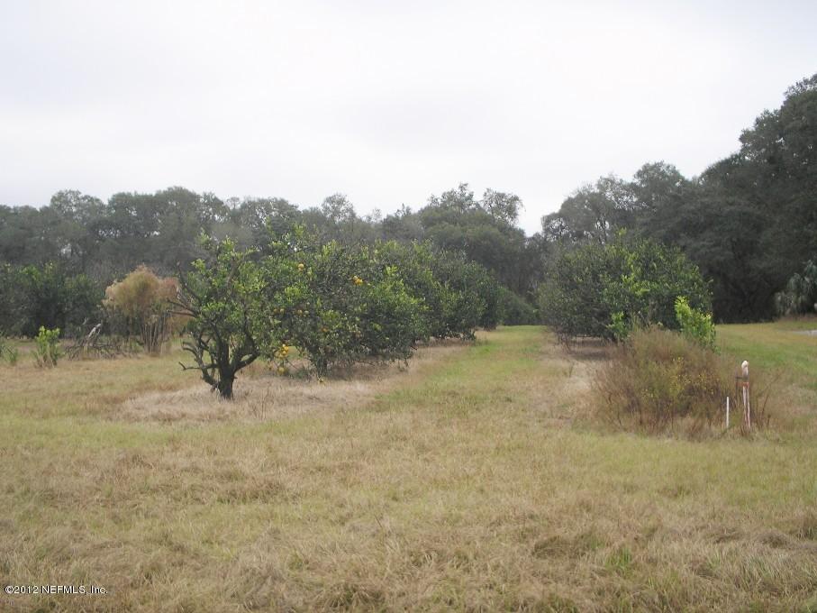178 PROSPECT, POMONA PARK, FLORIDA 32181, ,Vacant land,For sale,PROSPECT,959095