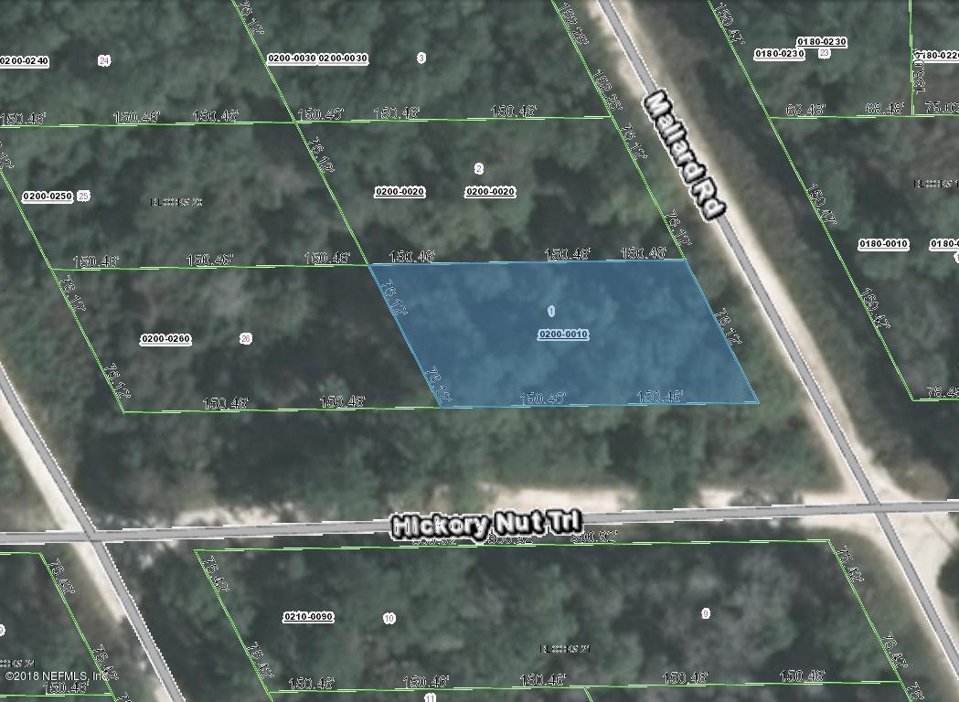 0200- 0010 HICKORY NUT- SATSUMA- FLORIDA 32189, ,Vacant land,For sale,HICKORY NUT,960874