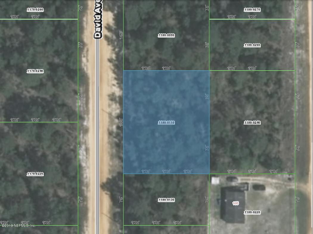 112 DAVID, INTERLACHEN, FLORIDA 32148, ,Vacant land,For sale,DAVID,960880