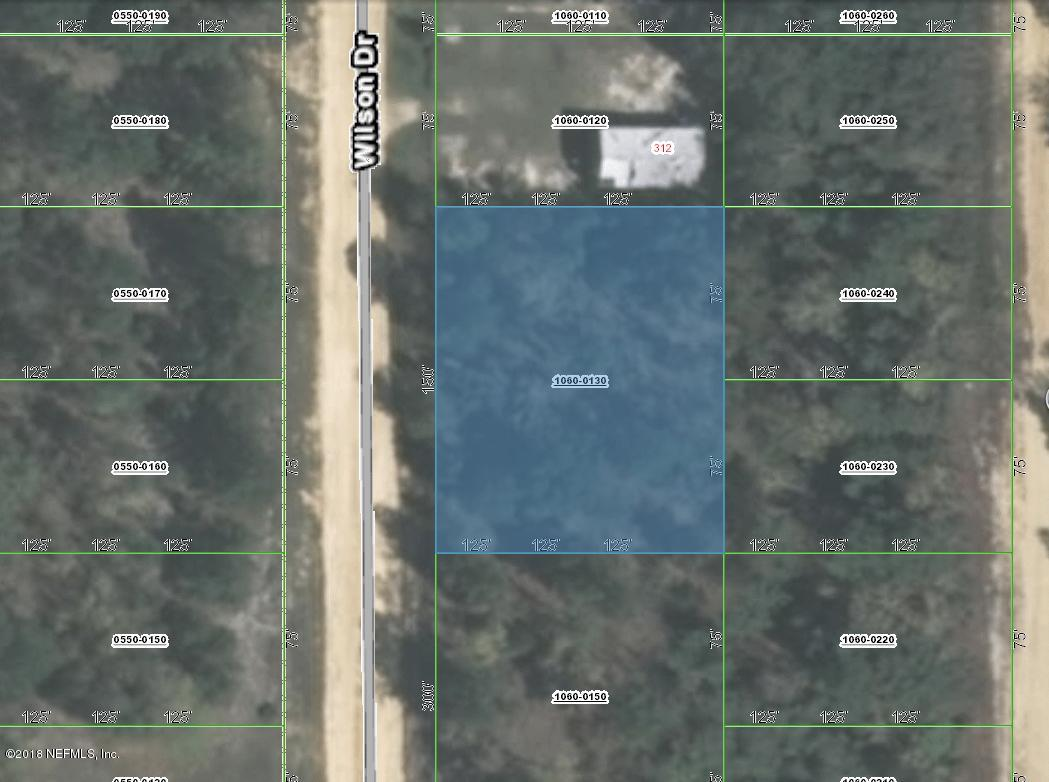 1060-0130 WILSON, INTERLACHEN, FLORIDA 32148, ,Vacant land,For sale,WILSON,960879