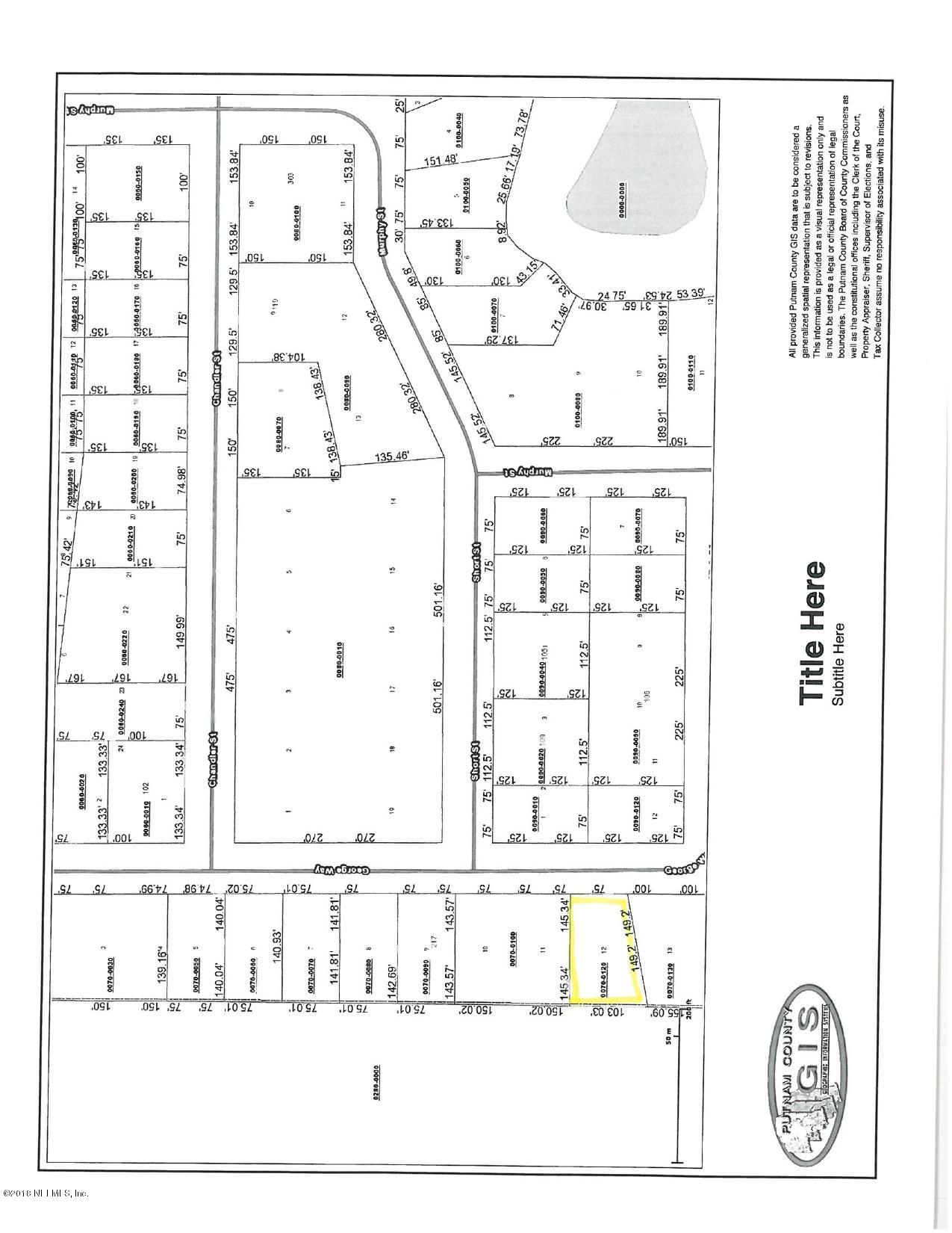 223 GEORGE, INTERLACHEN, FLORIDA 32148, ,Vacant land,For sale,GEORGE,963230