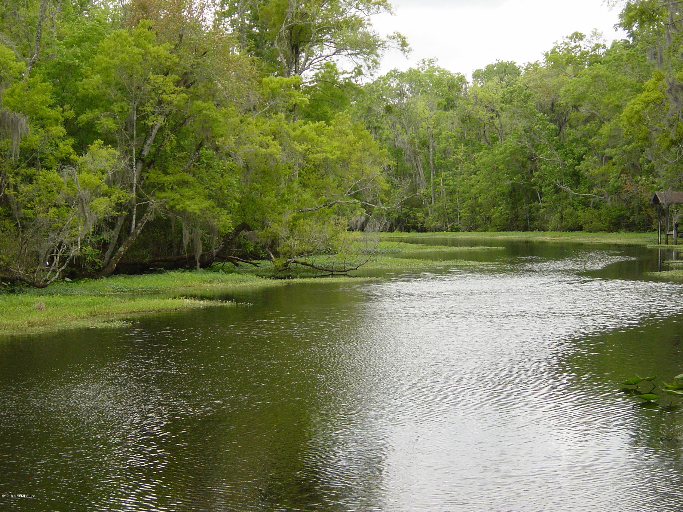 1539 PETERS CREEK, GREEN COVE SPRINGS, FLORIDA 32043, ,Vacant land,For sale,PETERS CREEK,967432