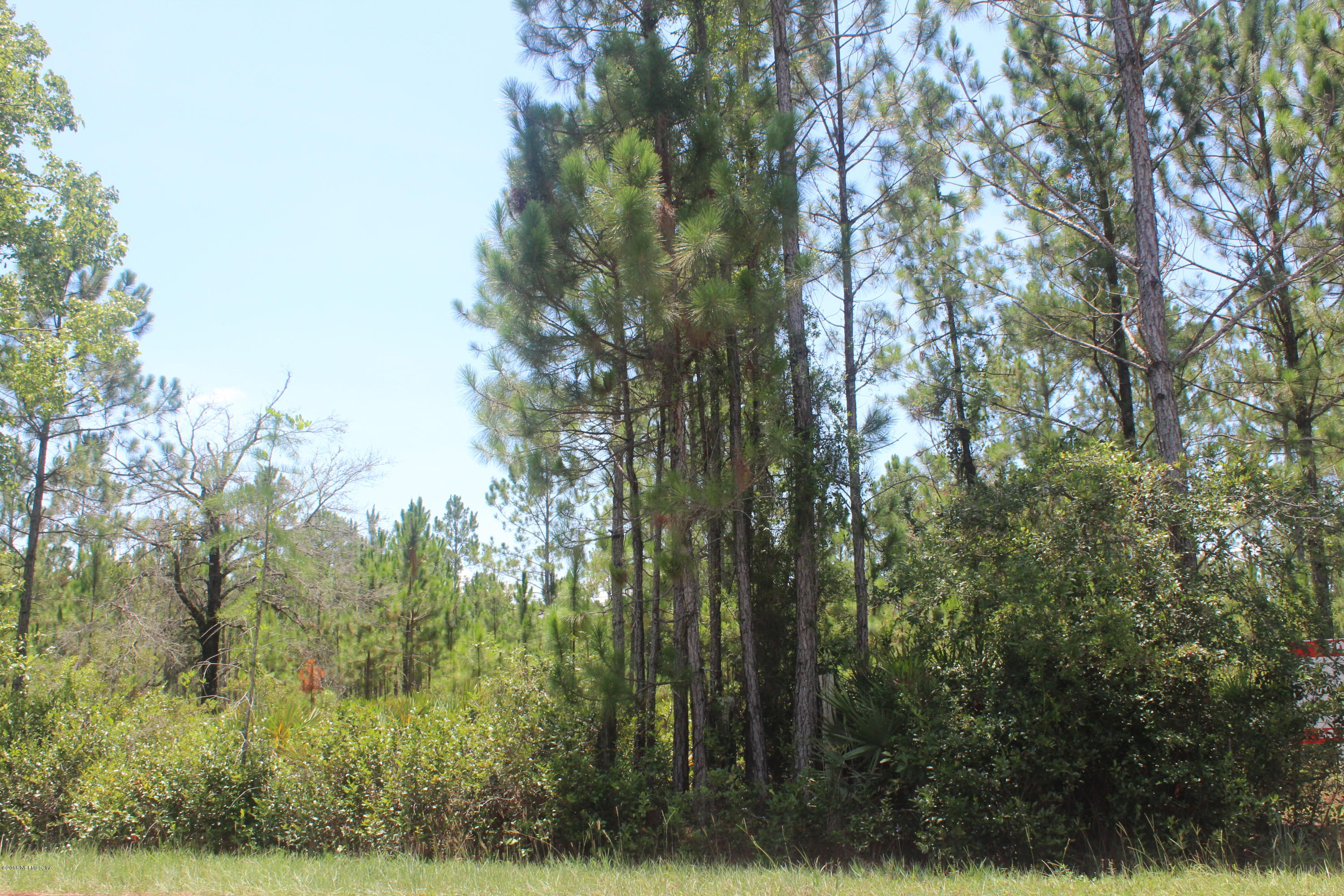 0 PLUMMER, JACKSONVILLE, FLORIDA 32219, ,Vacant land,For sale,PLUMMER,972216