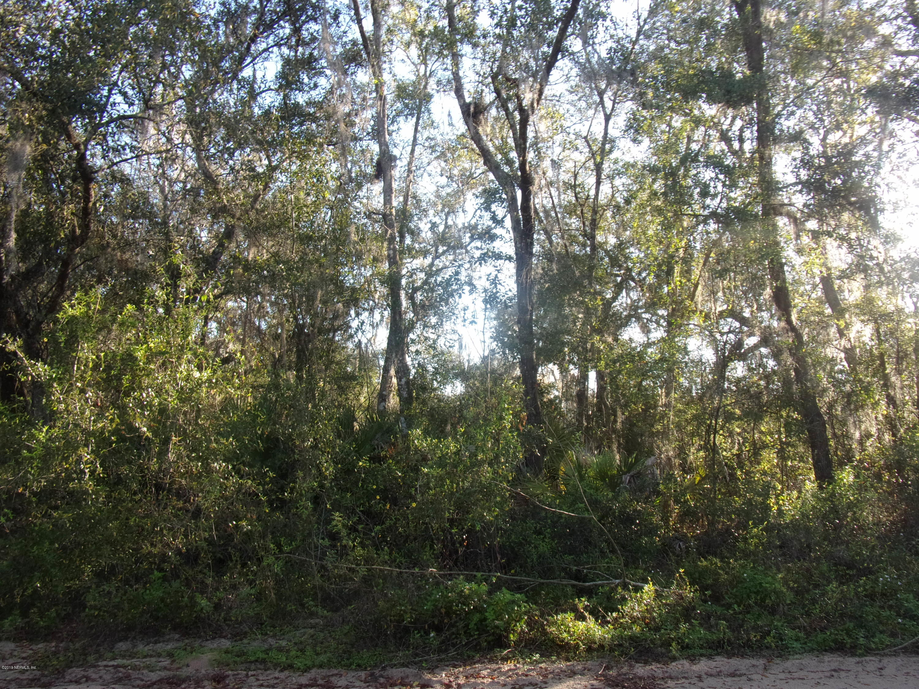 000 LANDMARK, SATSUMA, FLORIDA 32189, ,Vacant land,For sale,LANDMARK,981007