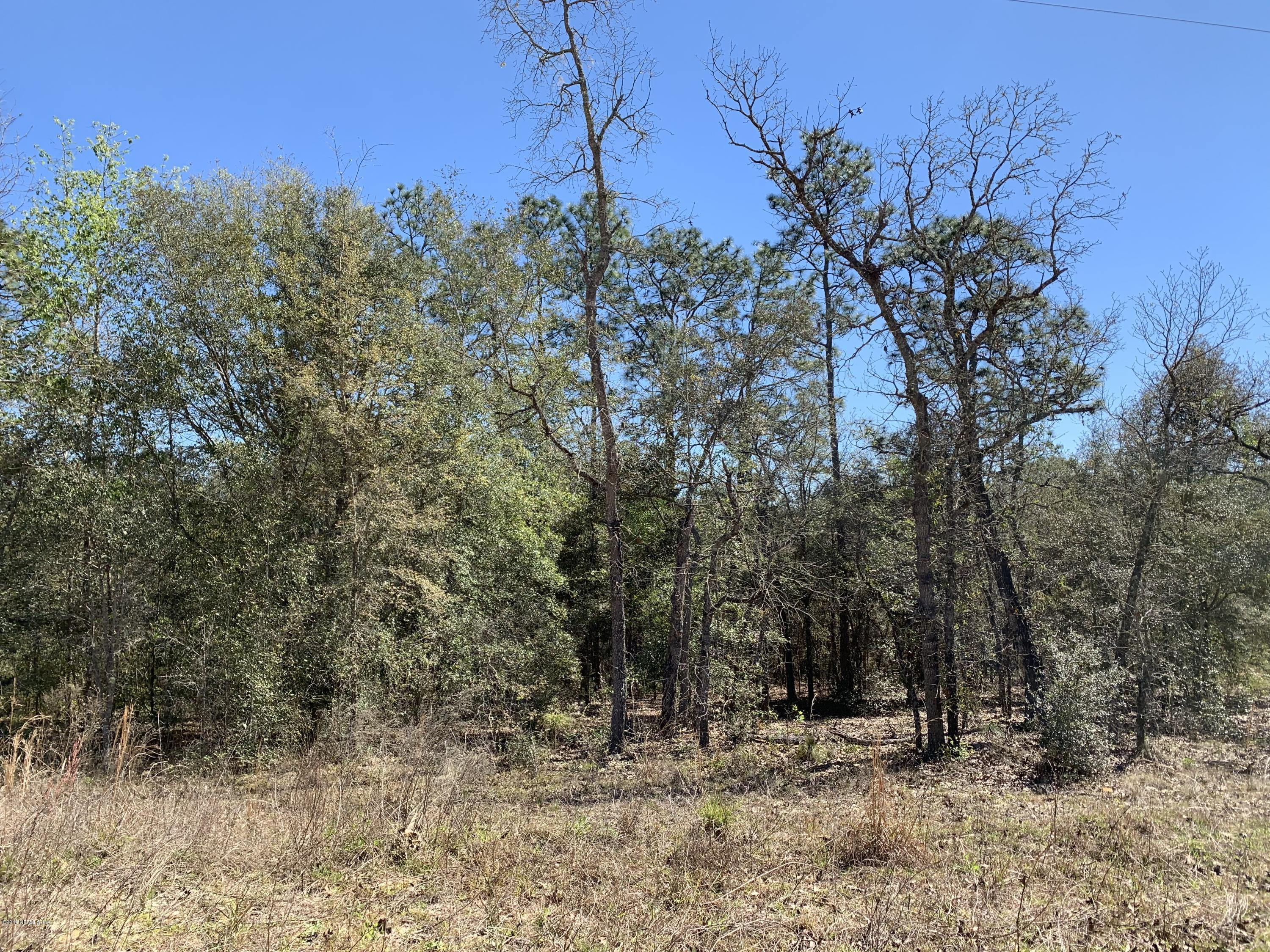 0 GREY, INTERLACHEN, FLORIDA 32148, ,Vacant land,For sale,GREY,982628