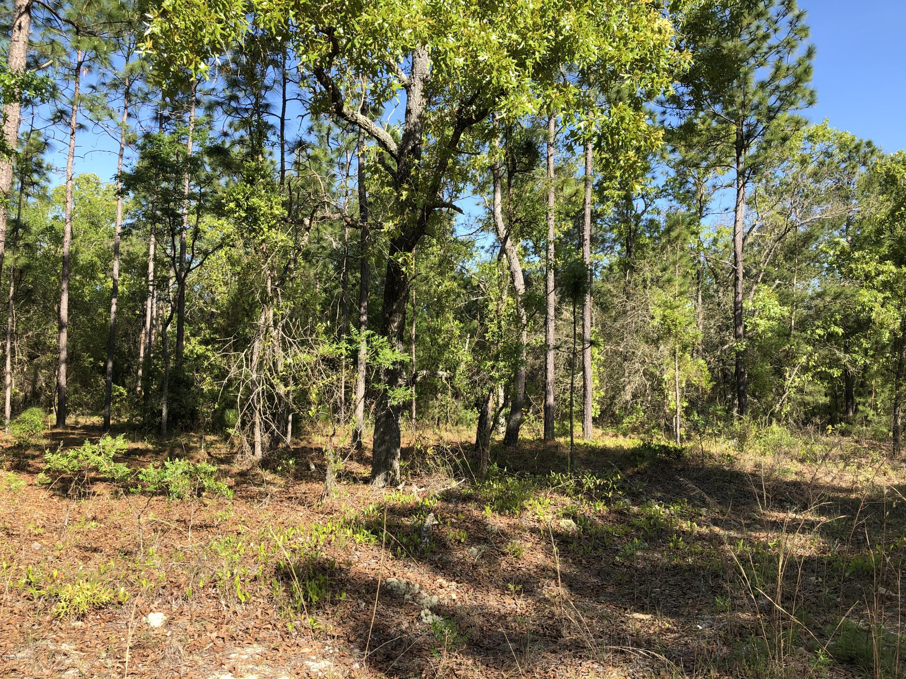 7112 SMITH, KEYSTONE HEIGHTS, FLORIDA 32656, ,Vacant land,For sale,SMITH,987296