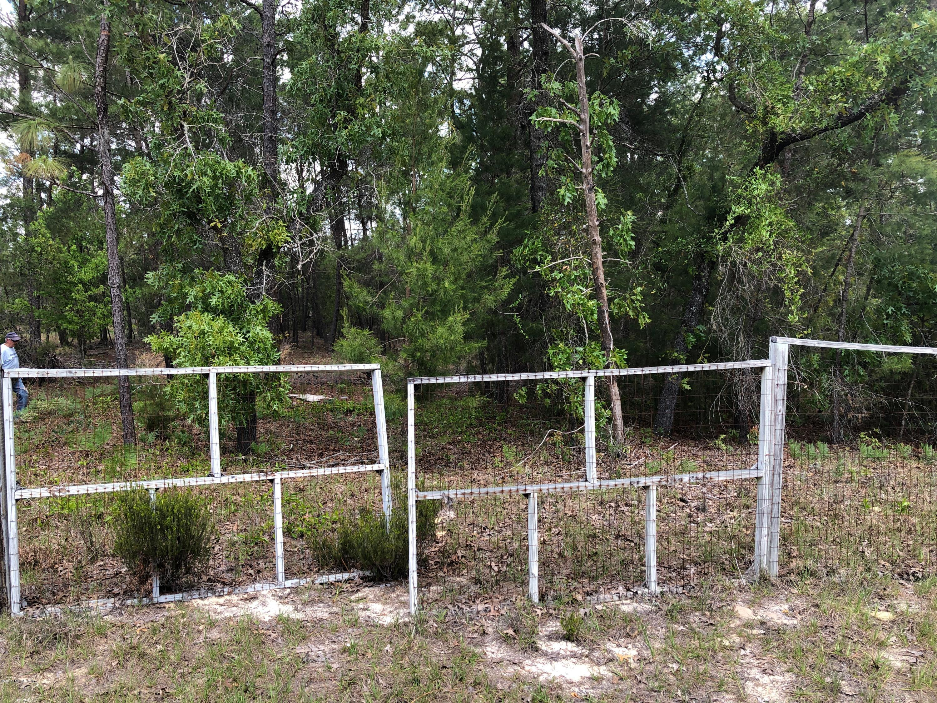 000 HILL TOP, HAWTHORNE, FLORIDA 32640, ,Vacant land,For sale,HILL TOP,989742