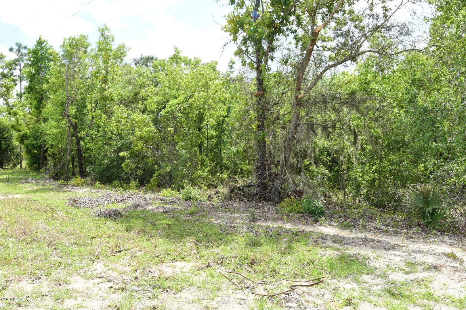 0 LONG BRANCH TRAIL, INTERLACHEN, FLORIDA 32148, ,Vacant land,For sale,LONG BRANCH TRAIL,990130