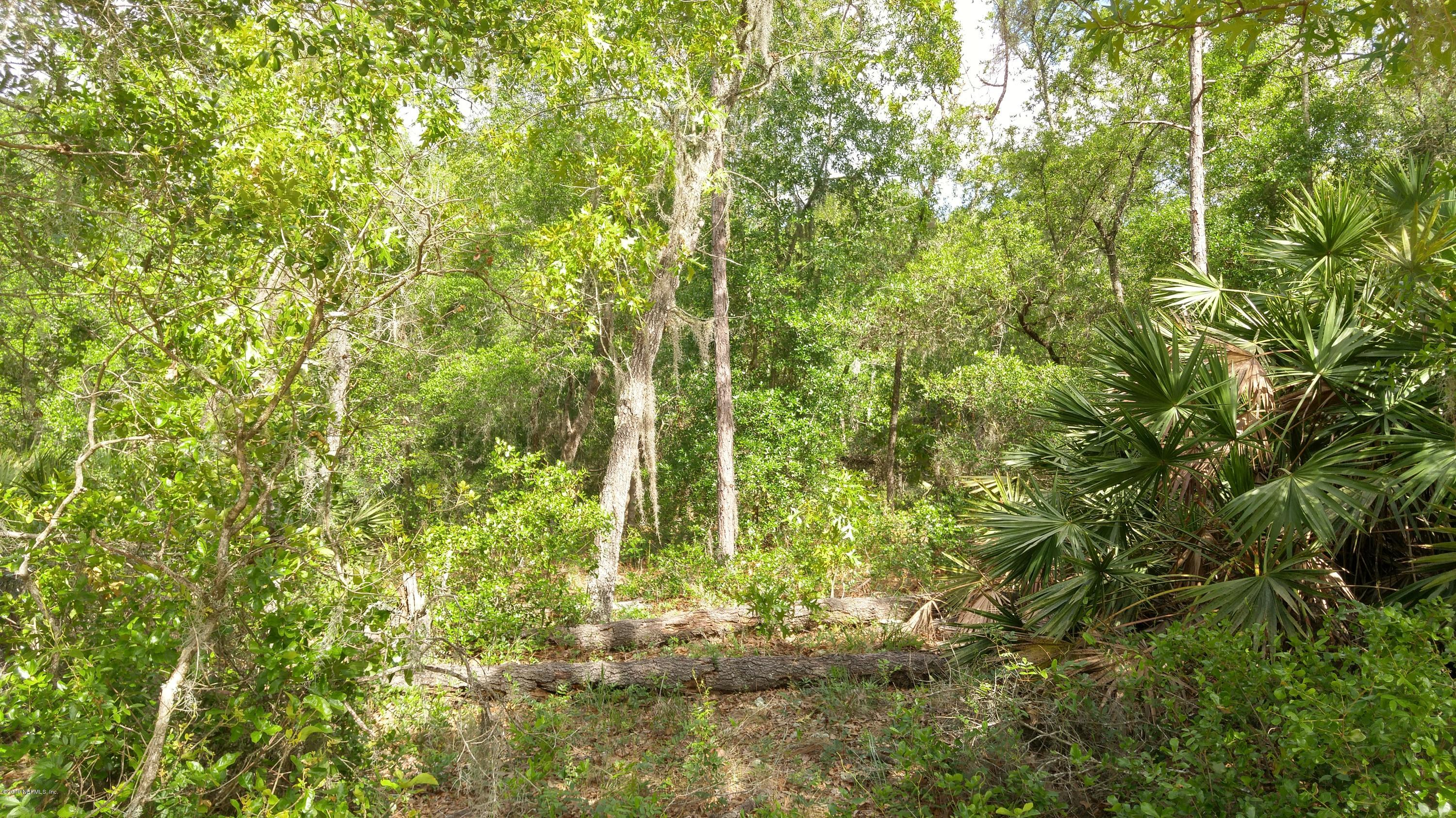 00 WILSON, INTERLACHEN, FLORIDA 32148, ,Vacant land,For sale,WILSON,992903
