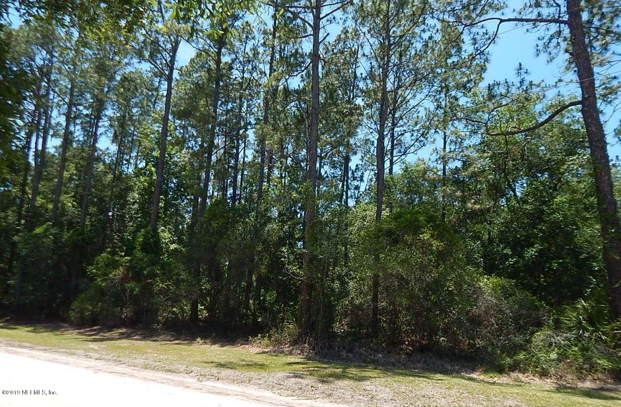 213 GAIL, SATSUMA, FLORIDA 32189, ,Vacant land,For sale,GAIL,993631