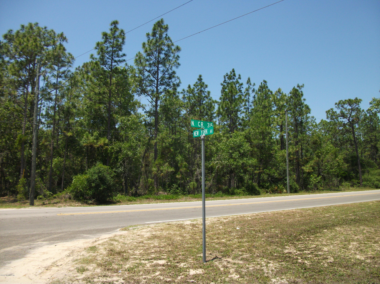 0 315, INTERLACHEN, FLORIDA 32148, ,Vacant land,For sale,315,997726