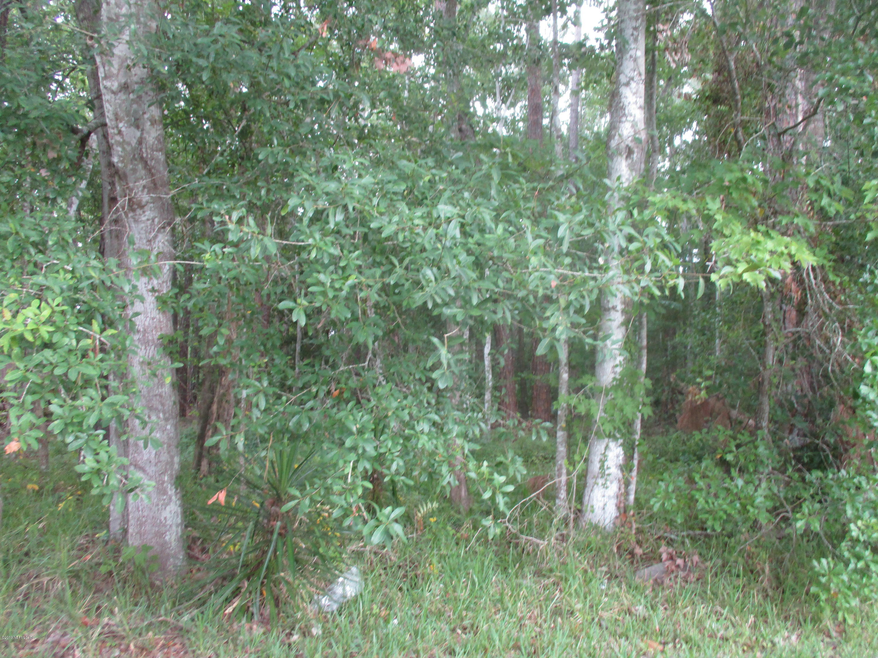 1010 MILL CREEK, JACKSONVILLE, FLORIDA 32211, ,Vacant land,For sale,MILL CREEK,1000569