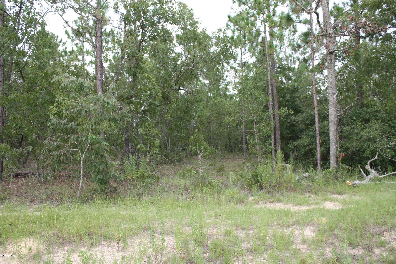 00 ALAMEDA, KEYSTONE HEIGHTS, FLORIDA 32656, ,Vacant land,For sale,ALAMEDA,1008762