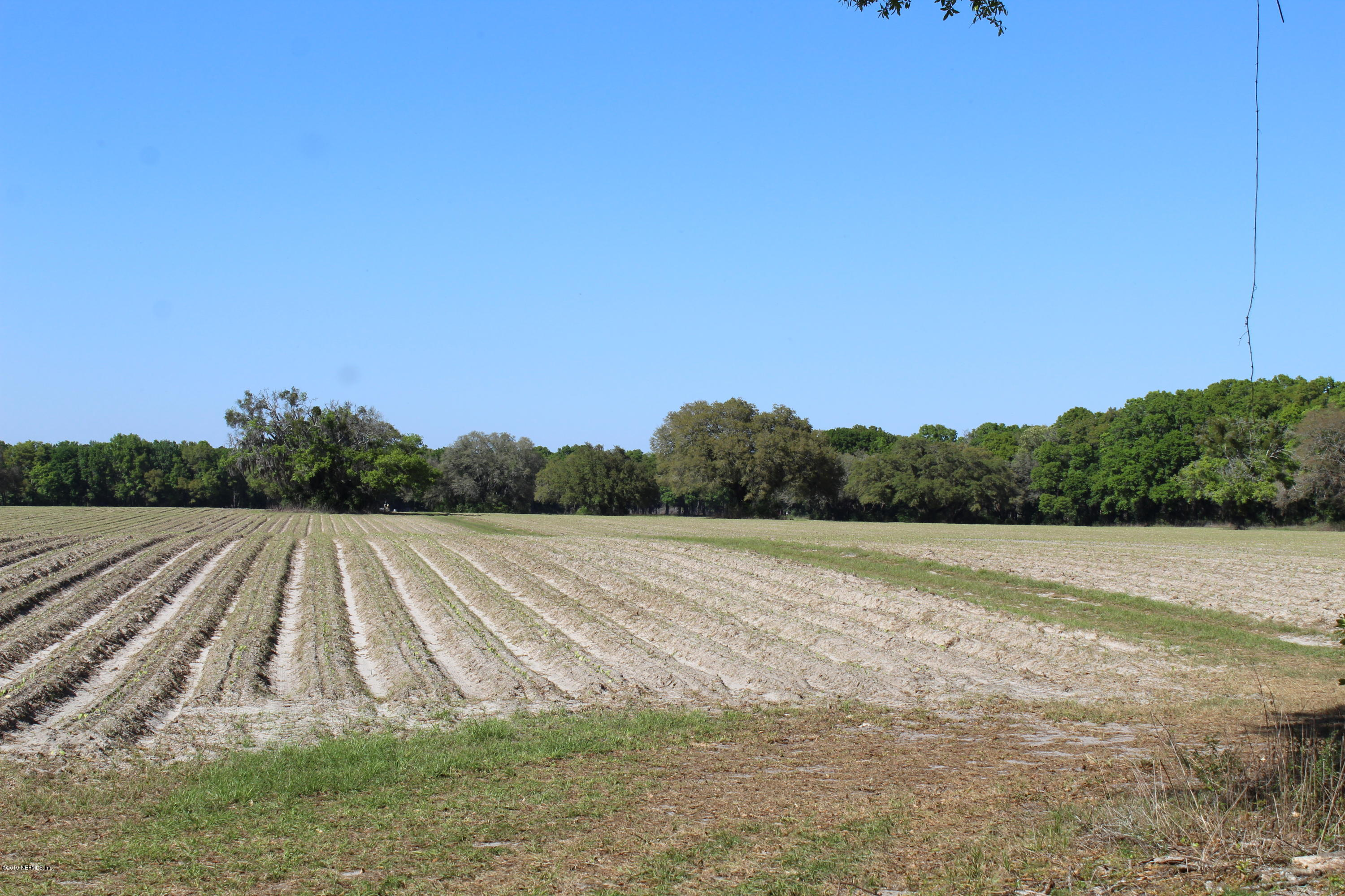 21603 227TH, HIGH SPRINGS, FLORIDA 32643, ,Vacant land,For sale,227TH,1009061