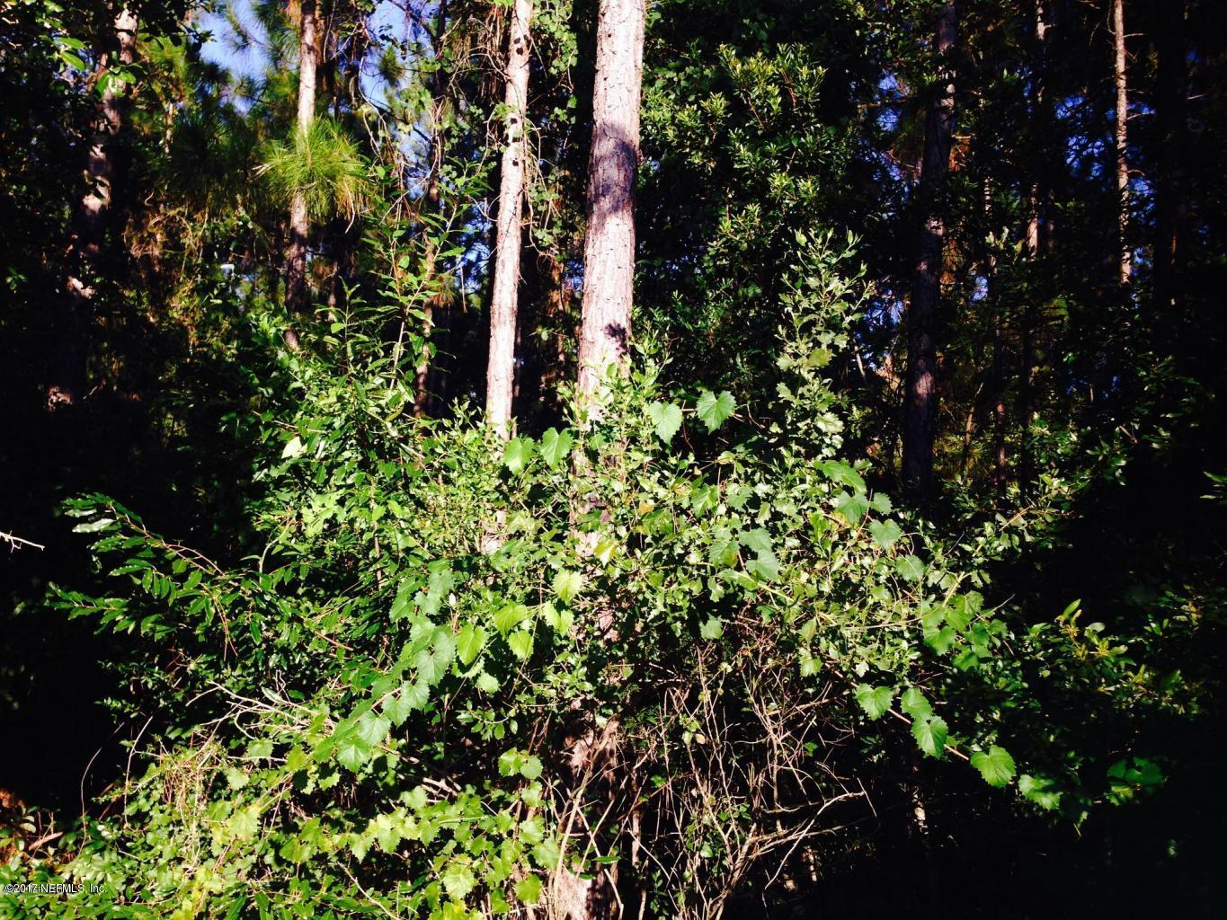0 FAWN LAKE, JACKSONVILLE, FLORIDA 32256, ,Vacant land,For sale,FAWN LAKE,1012249