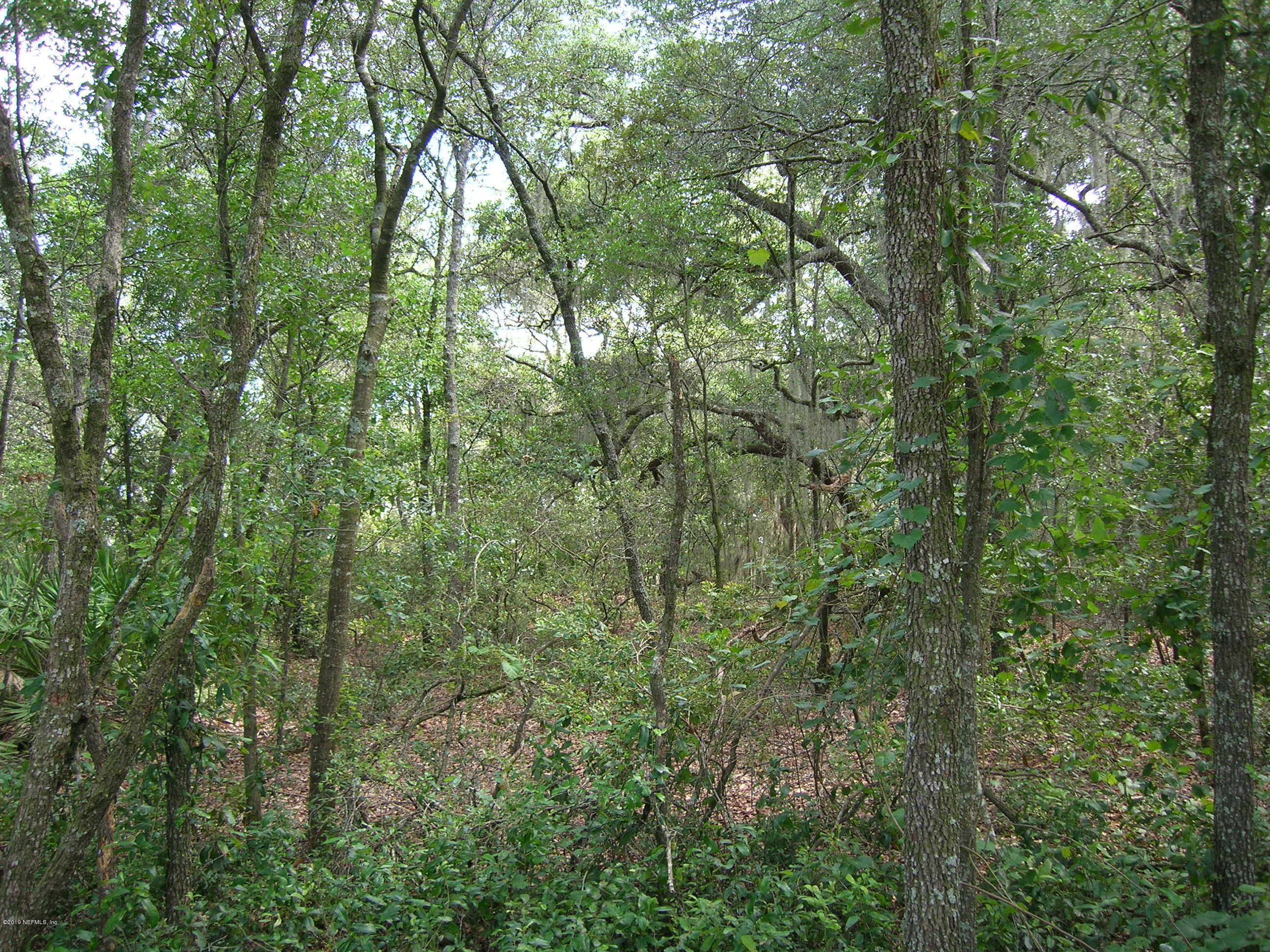 TBD 131ST, BELLEVIEW, FLORIDA 34420, ,Vacant land,For sale,131ST,1015900