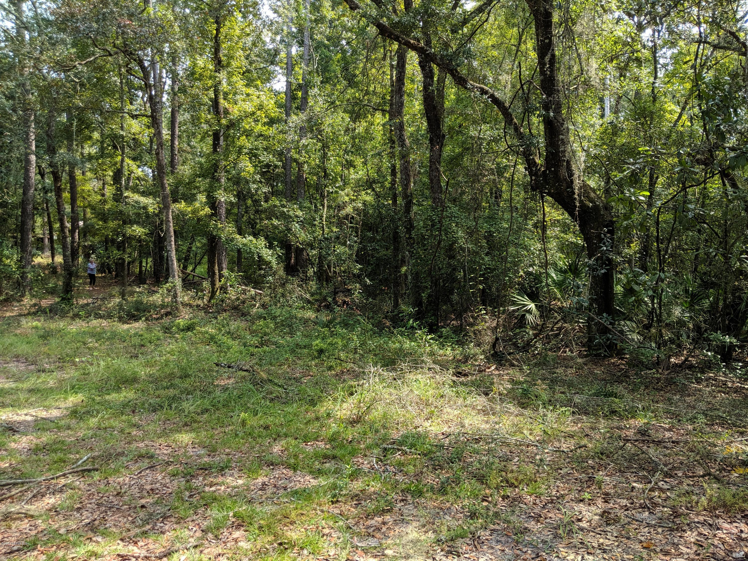 0 SAUNDERS, MIDDLEBURG, FLORIDA 32068, ,Vacant land,For sale,SAUNDERS,1015626