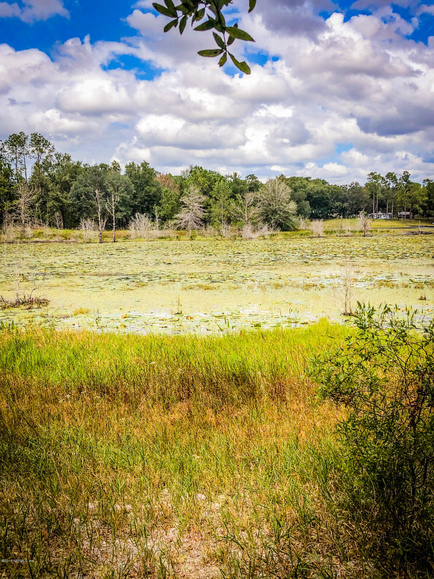 104 TWIN LAKES, HAWTHORNE, FLORIDA 32640, ,Vacant land,For sale,TWIN LAKES,1018982