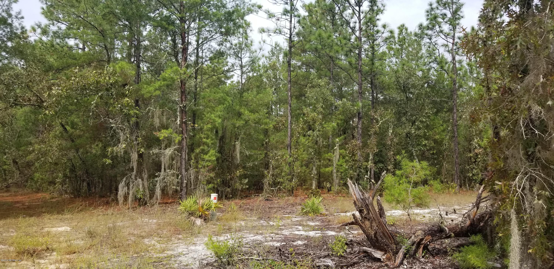 208 CENTERWOOD, FLORAHOME, FLORIDA 32140, ,Vacant land,For sale,CENTERWOOD,1019591