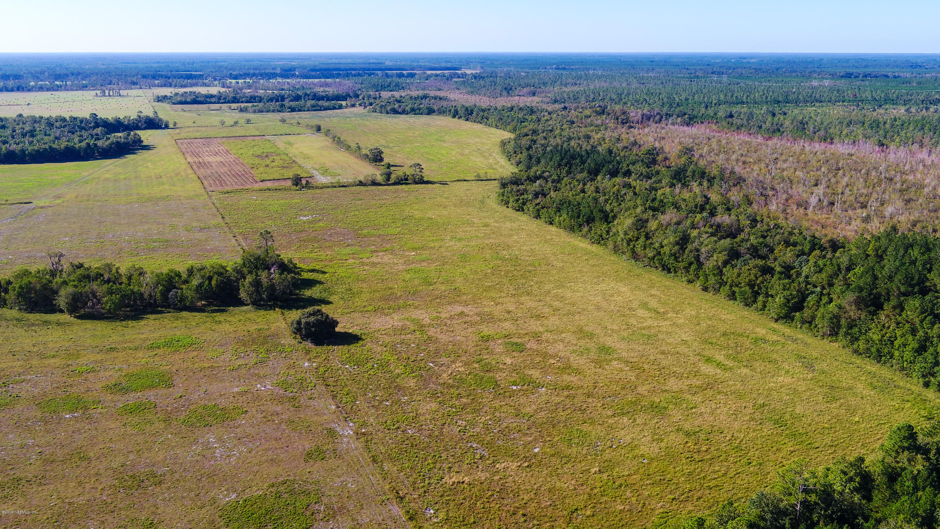 24614 WOOLIE B, CALLAHAN, FLORIDA 32011, ,Vacant land,For sale,WOOLIE B,1020871